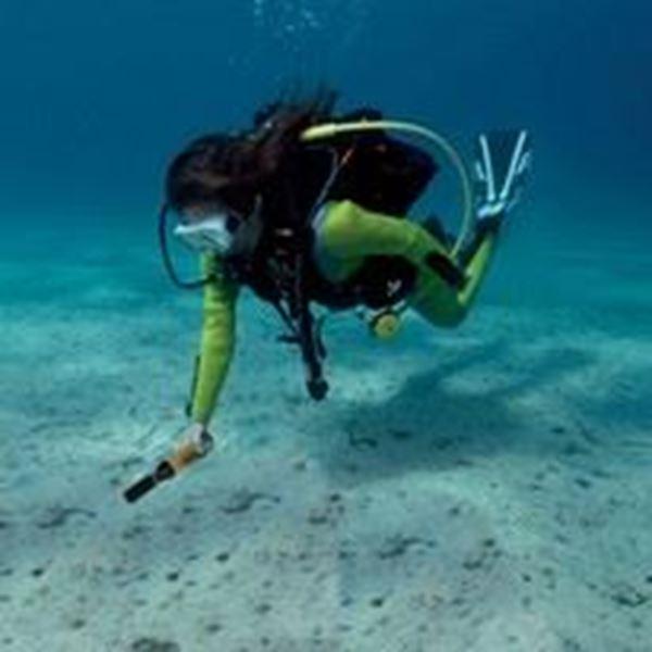 Billede af Underwater pinpoint UWPP 10