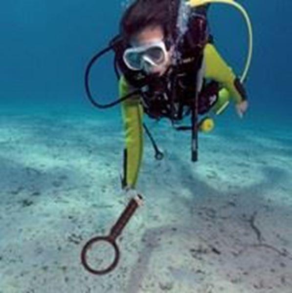 Billede af UWM 20 Underwater metal detector