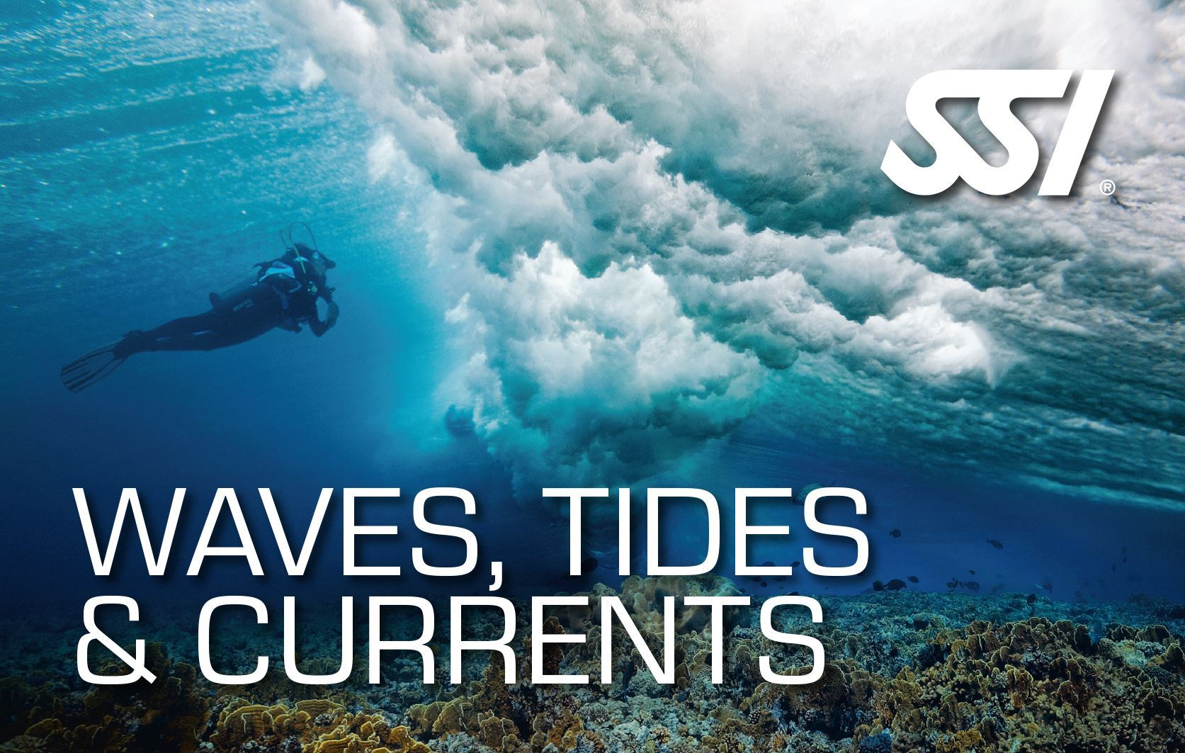 SSI Waves, Tides and Currents Speciality - Strømdykning thumbnail