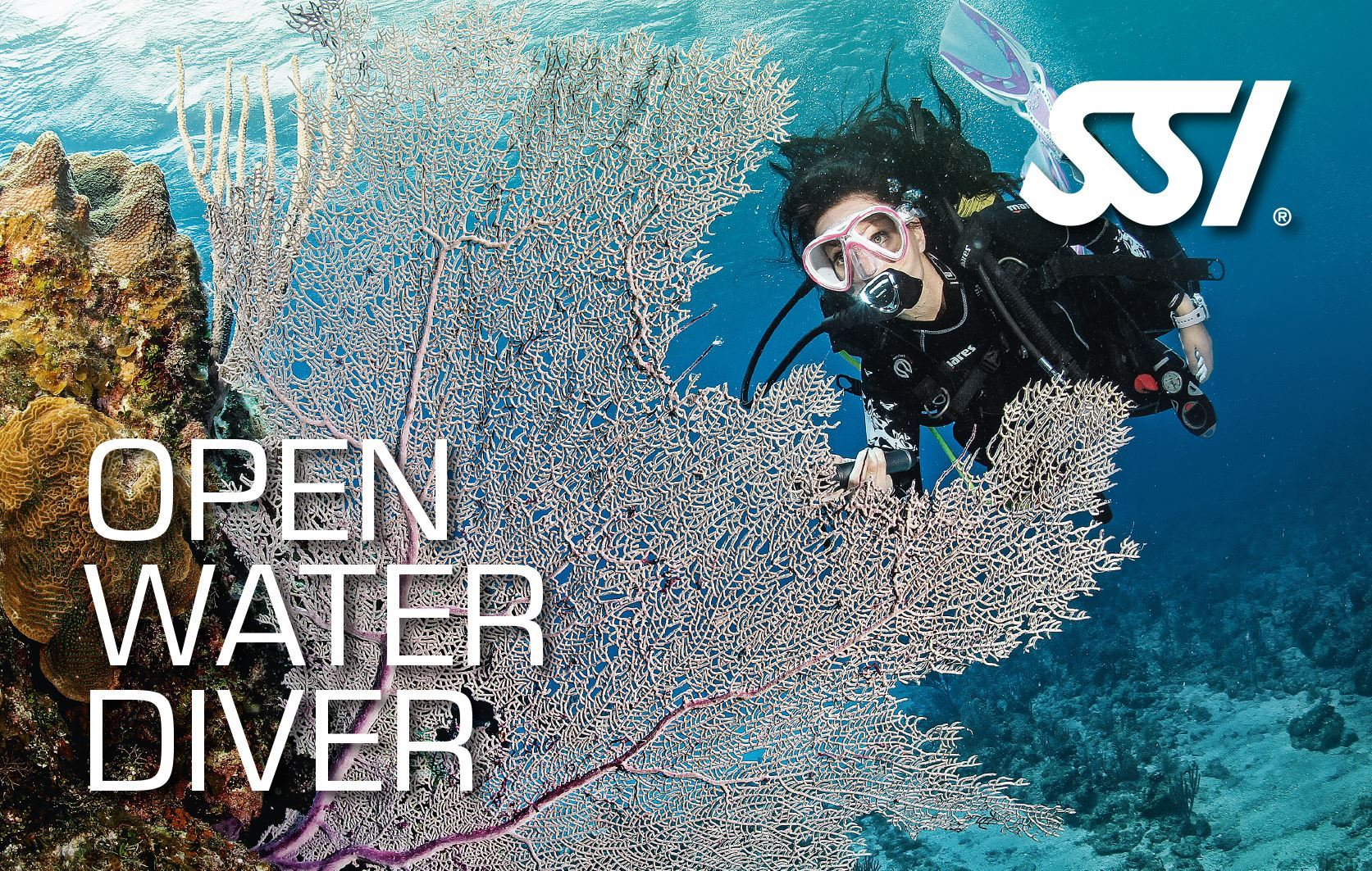 SSI Open Water Diver (begynderkursus) thumbnail