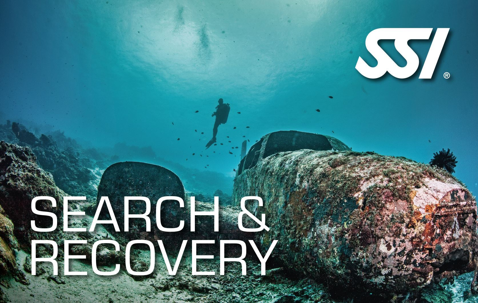 SSI Search and Recovery - Søg og gendannelse thumbnail