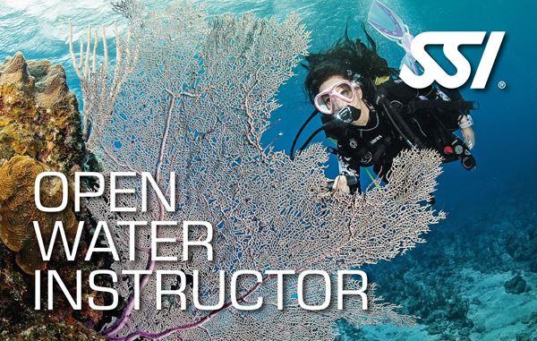 Billede af SSI Instruktør kursus - eksl. materialer