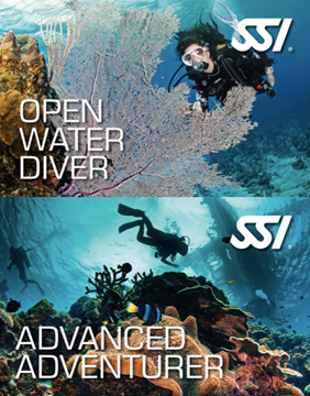 Billede af SSI Open Water & SSI Advanced Adventurer