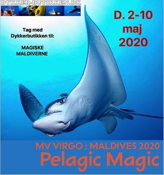 Billede af Tag med Dykkerbutikken til MAGISKE MALDIVERNE fra d. 2-10 maj 2020