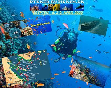 Billede af Tag med Dykkerbutikken til EGYPTEN fra d. 2-9 april 2020