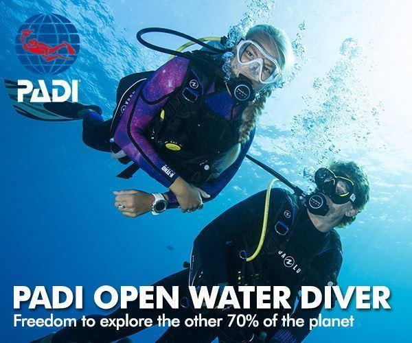 Padi Open Water Diver (begynderkursus) thumbnail