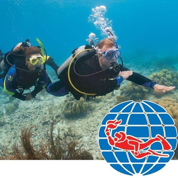 Billede af PADI Navigation Diver Specialty